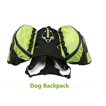 Pettom Dog Travel Backpack – Best High-End