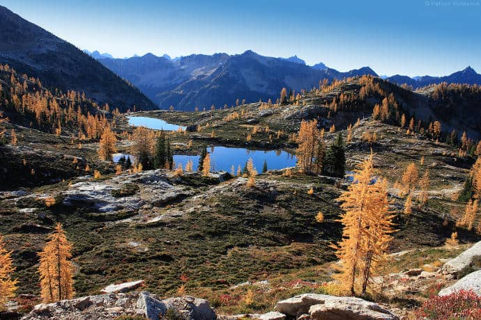 Larch Lake
