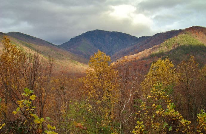 Watch the Foliage from Campbell Overlook