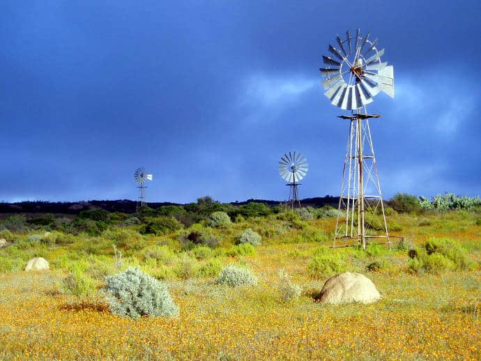 Namaqua-National-Park-2