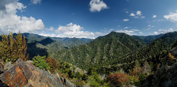 Hike Up Mount LeConte